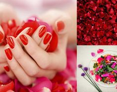 10-ways-to-use-rose-petals-in-the-home-and-kitchen3