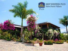 EL MEJOR HOTEL DE PUERTO VALLARTA. El Jardín Botánico, es un atractivo lugar lleno de vegetación con hermosos y amplios jardines adornados con plantas, flores y un gran colorido que lo dejará sorprendido cuando lo visite. En Best Western Plus Suites Puerto Vallarta, le recomendamos agregar este lugar a su lista de sitios por conocer. #MyBESTvacations