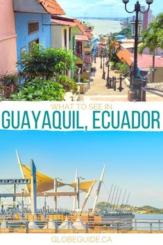 Seeing the colourful homes, walking along the Malecon and visiting an iguana park are some of the fun things to do in Guayaquil, the gateway to the Galapagos.  Ecuador travel | South America travel