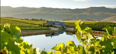 See the endless views of Hemel-en-aarde valley whilst sipping on heavenly pinot noir. Cool Places To Visit, Places To Travel, Wine Tourism, Travel Abroad, Heaven On Earth, Day Trips, Wines, Tours, South Africa