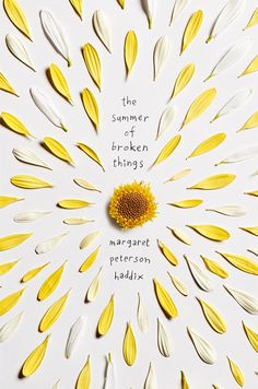 Flipsnack #book cover art #illustration | The Summer of Broken Things by Margaret Peterson Haddix https://www.goodreads.com/book/show/18740848-the-summer-of-broken-things