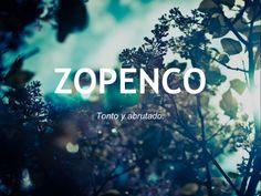 zopenco_otras20palabras