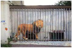 Street art: ну очень неоднозначные граффити от СРSidewalk Art, Art Graphique, Land Art, Street Artists, Graffiti Art, Art Museum, Signage, Sculpture, 3d Illustrations