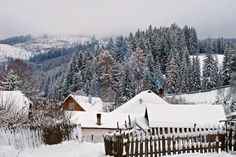 Winter Wonderland, Snow, Outdoor, Outdoors, Outdoor Games, The Great Outdoors, Eyes, Let It Snow