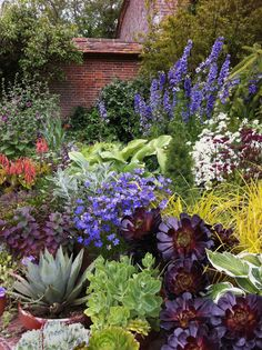 A large cluster of potted plants in the Wall Garden