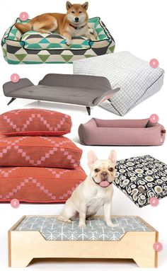 You don't have to sacrifice style when making a cozy spot for your dog in your home. These modern pet beds are stylish and comfy!