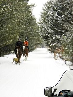 Get fantastic pointers on snowmobiles. They are on call for you on our site. Atv, Trail, Snowmobiles, American, Pointers, Outdoor, Outdoors, Stylus, Mtb Bike