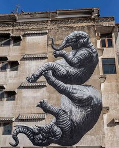 Nuovo pezzo dello street artist belga ROA a Bangkok, Tailandia