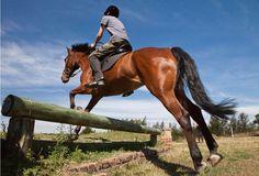 El Cross o Campo a través es una disciplina que consiste en el salto de obstáculos artificiales y naturales ubicados en una pista natural, normalmente en una zona de campo. Por ello, también se le denomina en inglés 'cross-country', es decir, 'campo a través'.
