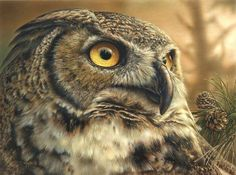 Limited edition prints for sale by wildlife artist, Denis Mayer Jr. Original wildlife paintings are accepted. Wildlife Paintings, Wildlife Art, Animal Paintings, Owl Art, Bird Art, Canadian Wildlife, Owl Pictures, Great Horned Owl, Colorful Paintings