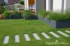 Ogród tworzę nowoczesny czyli wewnętrzna walka jak nie zostać kokoszką :) - strona 950 - Forum ogrodnicze - Ogrodowisko