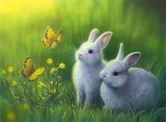 konijntjes super mooi