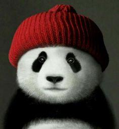 Have a Merry Panda Christmas everyone! Panda Illustration, Niedlicher Panda, Cute Panda Wallpaper, Baby Animals, Cute Animals, Panda Drawing, Baby Panda Bears, Panda Wallpapers, Bear Art