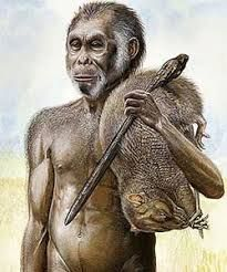 Gambar Dan Jenis Jenis Manusia Purba Yang Ditemukan Di Indonesia Sejarah Manusia Binatang