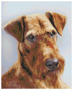 "Irish Terrier 14 Count Cross Stitch Kit With over 10 years experience of producing professional hand made cross stitch kits, it is our pleasure to offer this wonderful cross stitch kit of Irish Terrier. The design measures 8.14"" x 10"" (21cm x 25cm) using 23 colours. The kit uses whole Cross Stitches - no backstitching. It is ideal for Beginners and Advanced cross stitchers alike. This listing is for the full kit, it is complete, unopened and contains: Colour Image of finished design •…"