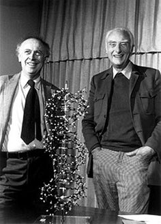 Watson and Crick reunited, with the double helix model of the DNA molecule.