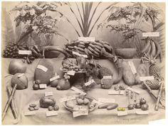 El Museo Tamayo presenta la primera exposición en México de la artista británica Tacita Dean, que reúne un amplio grupo de trabajos en diversos soportes, incluyendo pintura, fotografía, objetos encontrados e intervenidos, dibujo y cine.