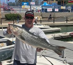THE WILLIAMS' BROTHERS did it again at Striper Derby 2017, only this year it was Scott who scored the biggest lineside of this year's event, a 15.44 pounder on Day One that trounced the competition in Big Fish Option pools.