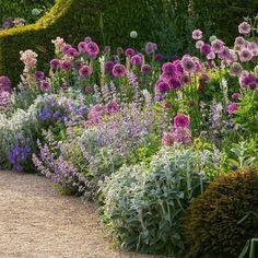 Garden King, Garden Club, Cottage Garden Design, Cottage Garden Borders, Rose Garden Design, Cottage Garden Plants, Garden Design Plans, Lush Garden, Garden Path