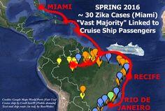 Tracing Zika's Path to Florida, Culex, and Wolbachia