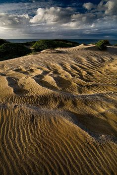 Nahoon Nature Reserve, Eastern Cape, South Africa