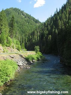 St. Joe River in northern Idaho,, love to kayak float or fly fish... Then some huckleberry picking .....