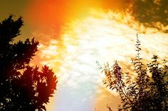 #Vintage #Sunset