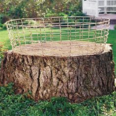 tree stump and wire basket