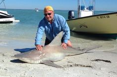 Sandbar shark caught inshore of North Captiva, Sanibel & Captiva Islands & Fort Myers Charters & Fishing Guide Service.