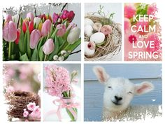 K.E. 06022015 Lente Collages, Vernal Equinox, Photo Mosaic, Photo Images, Seasons Of The Year, Christmas Mood, Spring Has Sprung, April Showers, Belle Photo