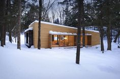 forest-getaway-cabin-dominated-by-warm-wood-boards-1-roof-slope.jpg