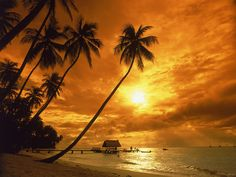 Pigeon Point beach at sunset...i love it here...Tobago is my favourite place.