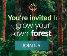 You´re invited to grow your own forest.