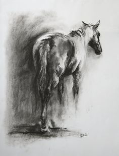 Original Black and white drawing Horse 2