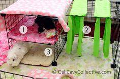 guinea pigs fleece | Guinea Pig C&C Fleece Cage Tour