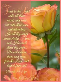 Proverbs KJV Good morning to all my sister in Christ! May your day be blessed and full of joy,love and laughter! Bible Verses Quotes, Bible Scriptures, Faith Quotes, Joy Quotes, Scripture Cards, King James Bible, Fear Of The Lord, Favorite Bible Verses, Faith In God