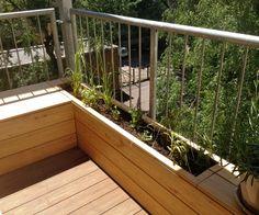 Bepflanzung_Balkon_Berlin.jpg