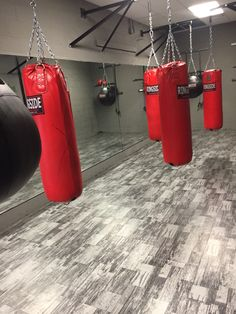 Unit 5 Manifest Content: The other day I dreamed that I was in a boxing match and was practicing boxing on bags like this.