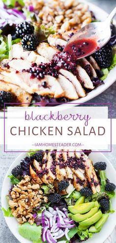 Blackberry Chicken Salad is a quick and easy healthy meal for dinner! This fruit and chicken salad is full of fresh and juicy blackberries and drizzled over with a blackberry balsamic vinegar dressing. It is a healthy recipe is full of textural delight! Save this pin!...