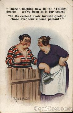 Two Women Talking Over Wooden Fence Comic, Funny