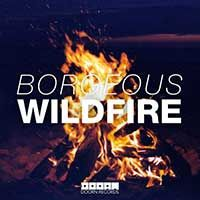Borgeous – Wildfire