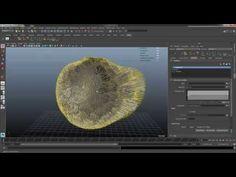 Autodesk Maya XGEN _part2(DynamicGroom) - YouTube