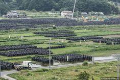 #FukushimaPós-Desastre