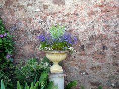 Mieke Löbker Tuinen van Devon | MijnAlbum - Fotoalbum Gratis Online! Bickham House