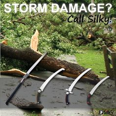 Storm damage? Call Silky!