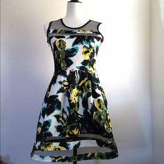 #Multicolor #Skater #Dress W/ #Mesh