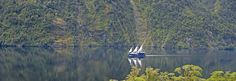 Doubtful Sound: Day and Overnight Cruises in Doubtful Sound