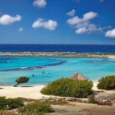 Baby Beach é definitivamente uma das praias prediletas dos turistas e também dos moradores locais da nossa ilha. Aqui você pode nadar longas distâncias e ainda assim tocar no fundo do mar, e depois relaxar nas espreguiçadeiras apreciando a bela paisagem.  Aproveite o feriado de Finados para conhecer as melhores praias da ilha feliz!http://scup.it/c7ij #FeriadoEmAruba #FelizEmAruba #OneHappyIsland