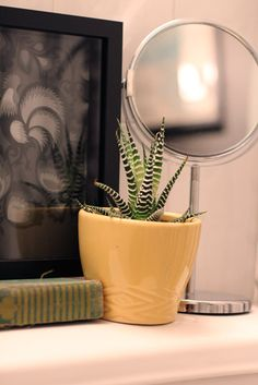 Michelle's Sweet and Eclectic Studio Bathroom Plants, Bathroom Renos, Bathroom Ideas, Small Plants, Indoor Plants, I Coming Home, Apartment Therapy, House Tours, House Plants