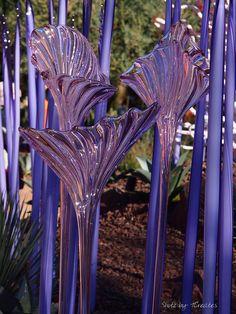 Chihuly's Purples, Desert Botanical Garden, Phoenix AZ